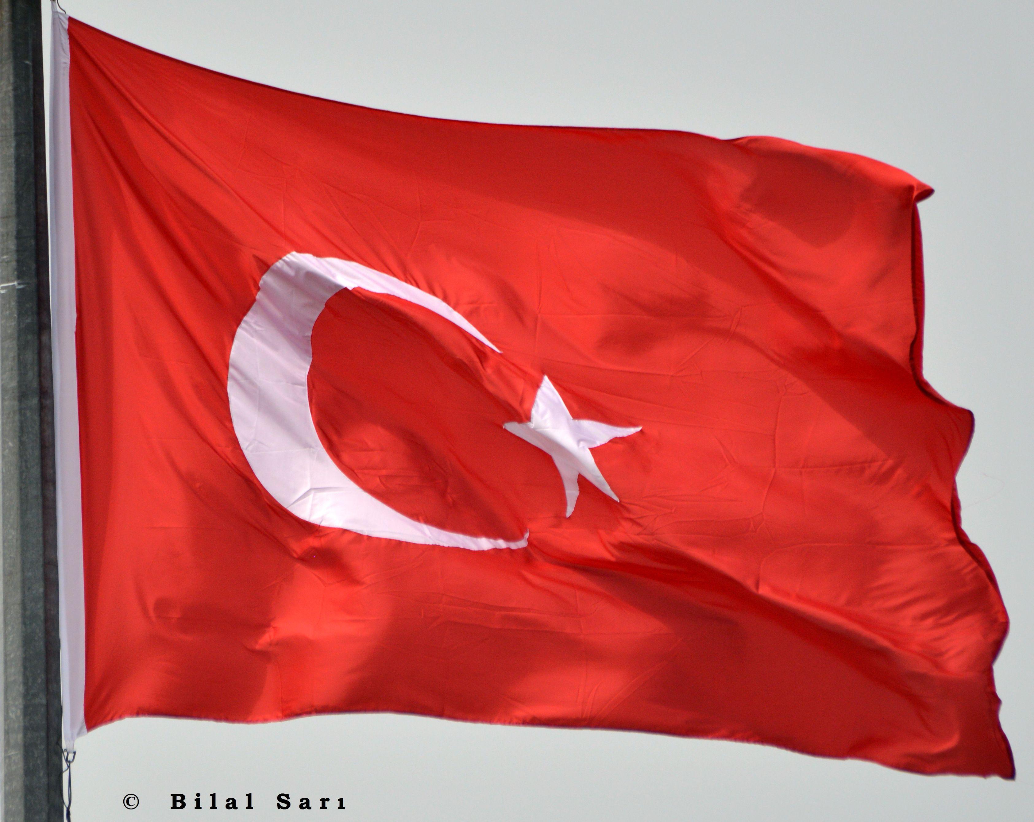 Bilal Sarı
